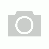 Alpinestars Mens SP-8 V2 Leather Gloves - Black / White